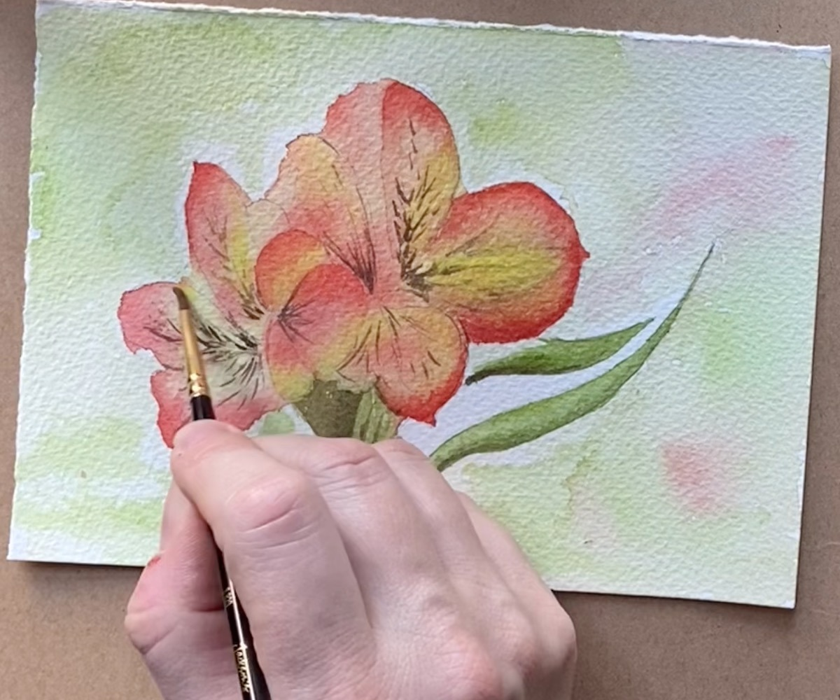 Watercolour drawing pink flower